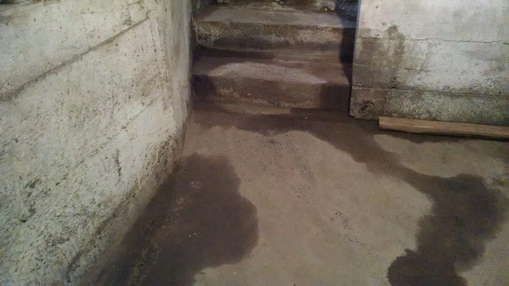 Basement Waterproofing Amp Foundation Repair Inspection